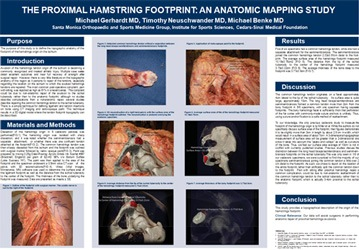 Proximal Hamstring Footprint- An Anatomic Mapping Study